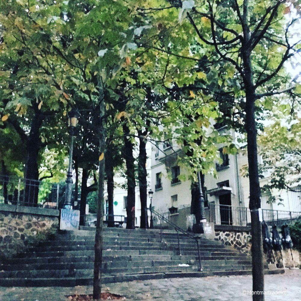 Les instantan s de la semaine 171 lulu from montmartre for Jardin 75018