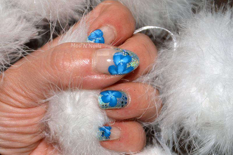 French holo et fleurs bleues