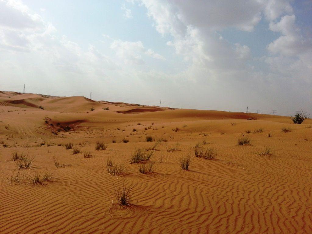 Dubai le desert