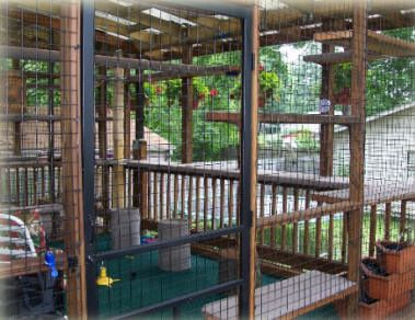 cat house plans outdoor
