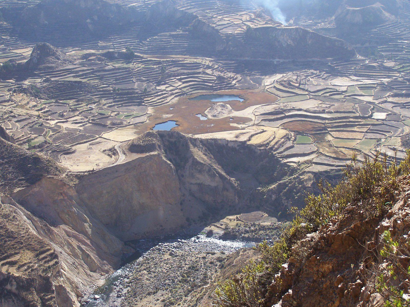 Les hauts plateaux (Catherine) et l'épis du Quinoa (internet)
