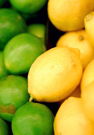 Portrait de fruit : le citron