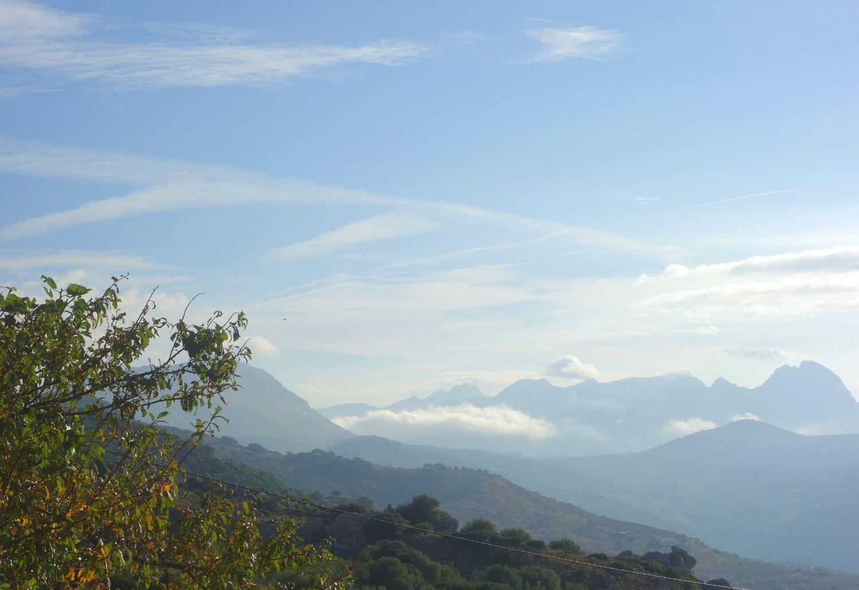 Andalousie, tourisme et tapas #3 quelques adresses