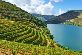 """1ère photo, crédit perso, il avait beaucoup plu les jours précédents et le fleuve n'était pas bleu ! 2ème photo  crédit """"magazine luxury retreats"""", le Douro et son environnements quand il n'a pas plu !"""