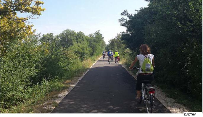 Saviez-vous que le Vaucluse est une terre d'excellence du vélo ?