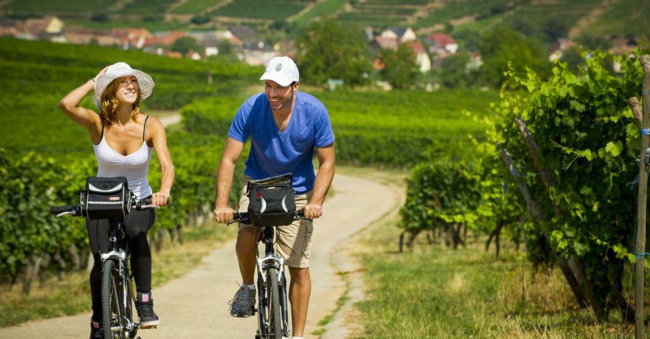 Véloroute du vignoble alsacien. © Service presse Alsace à vélo