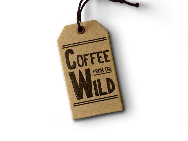 Coffee From The Wild (café et chocolat) | Design (concept) : Nicolás Aguirre Nankervis, Londres, Royaume-Uni (septembre 2015)