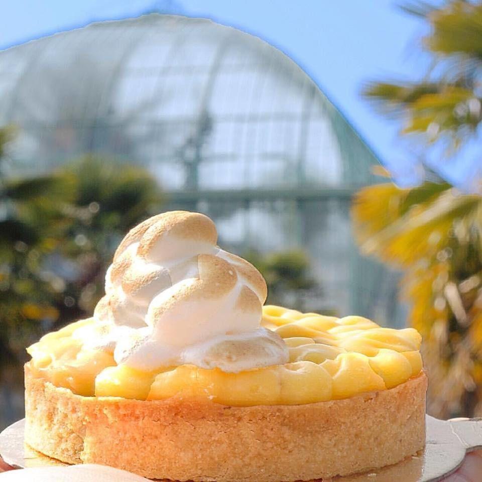 """""""VIE PARISIENNE : Jardin exotique des Serres d'Auteuil et tarte au citron de Patisserie Mori Yoshida"""" - © My Little Recettes"""
