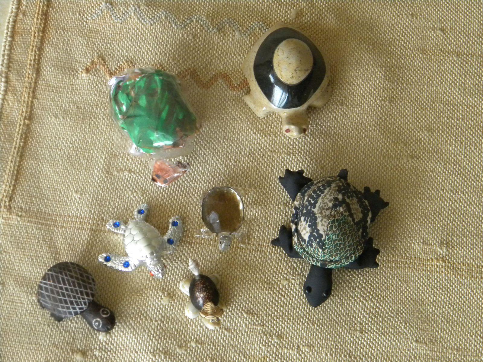 Cette tortue fait sept, c'est assez ?