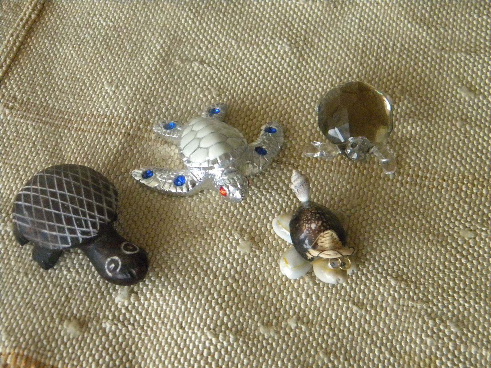 4 tortues sur un tapis