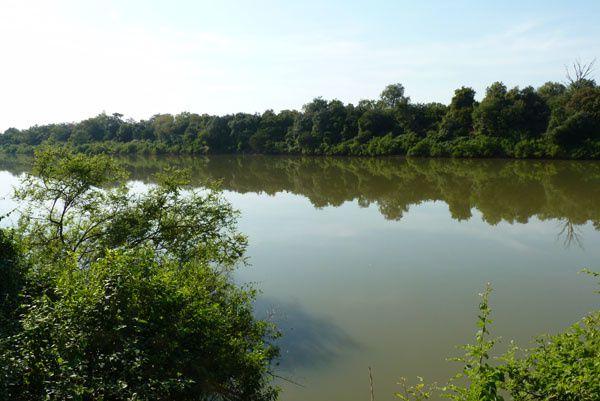 Le terrain d'Abdoulaye Sarr, au bord du fleuve Gambie, à quelques kilomètres au nord de Gouloumbou
