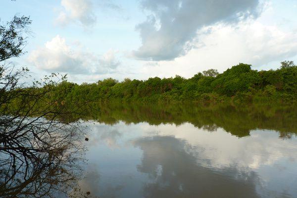 Le fleuve Gambie, au pied de mon terrain... si c'est pas merveilleux !