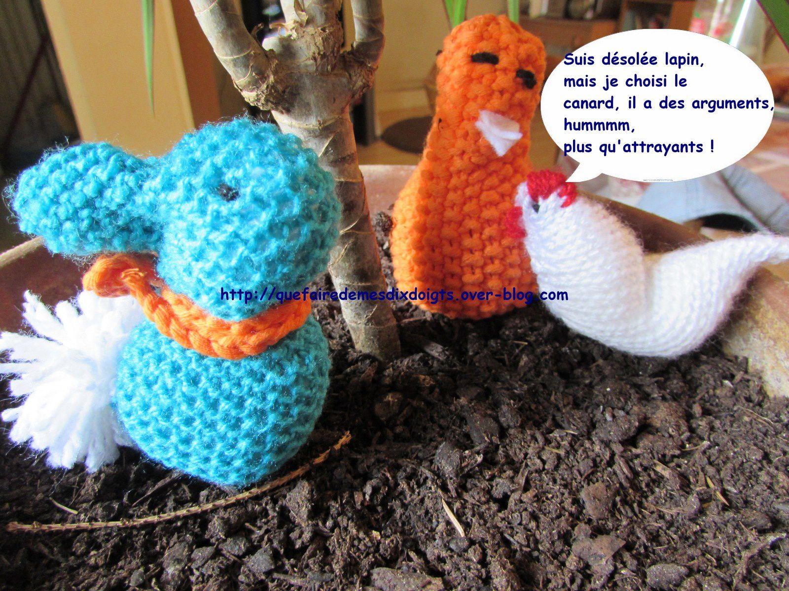 Le lapin, la poulette et le canard