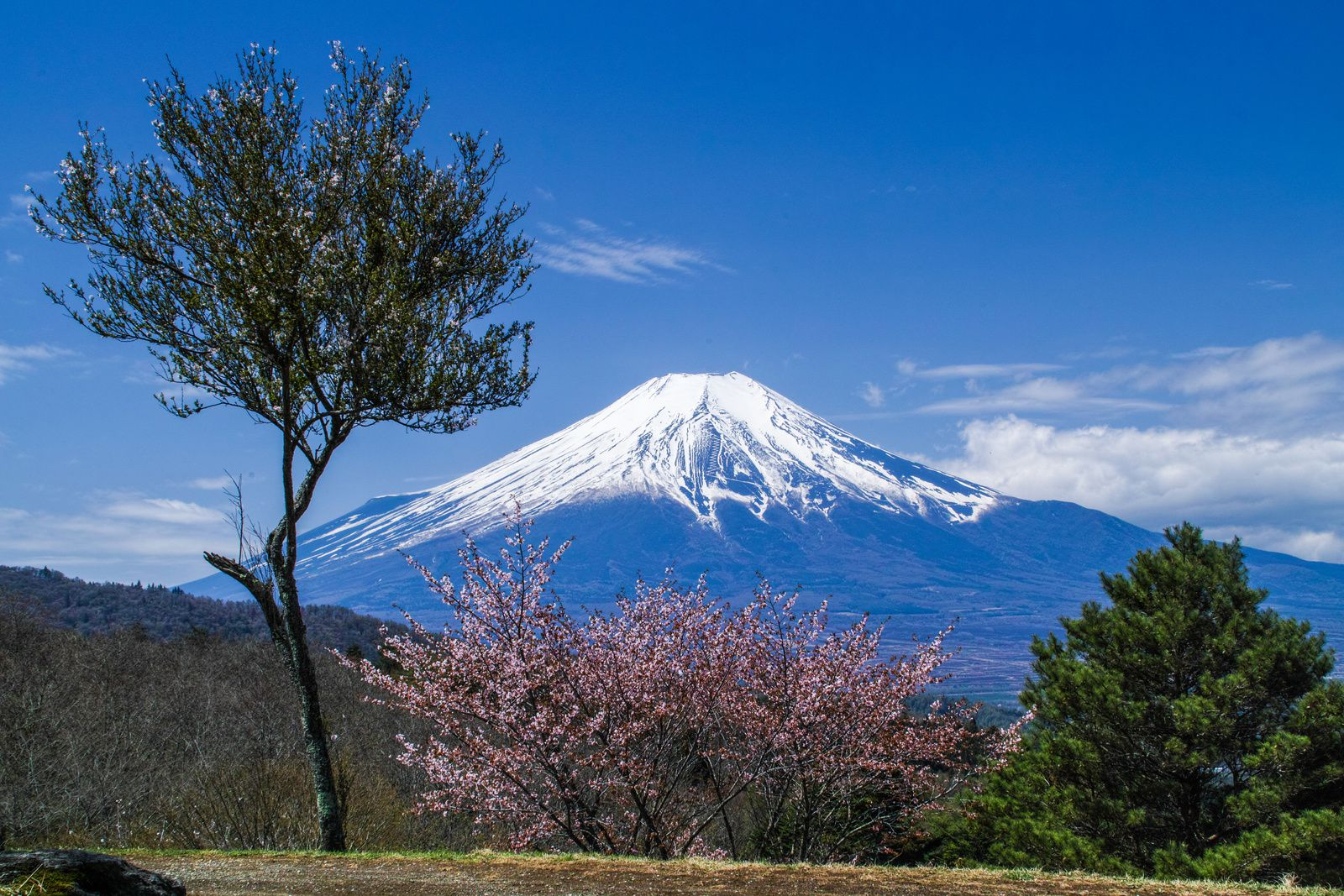 Le Mont Fuji : https://wall.alphacoders.com/tags.php?tid=22523&lang=French