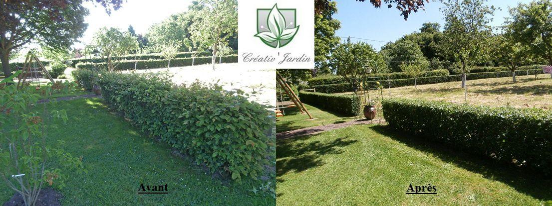 taille de haie la trinite de reville 27 eure cr ativ 39 jardin lolita fouquet jardinier. Black Bedroom Furniture Sets. Home Design Ideas