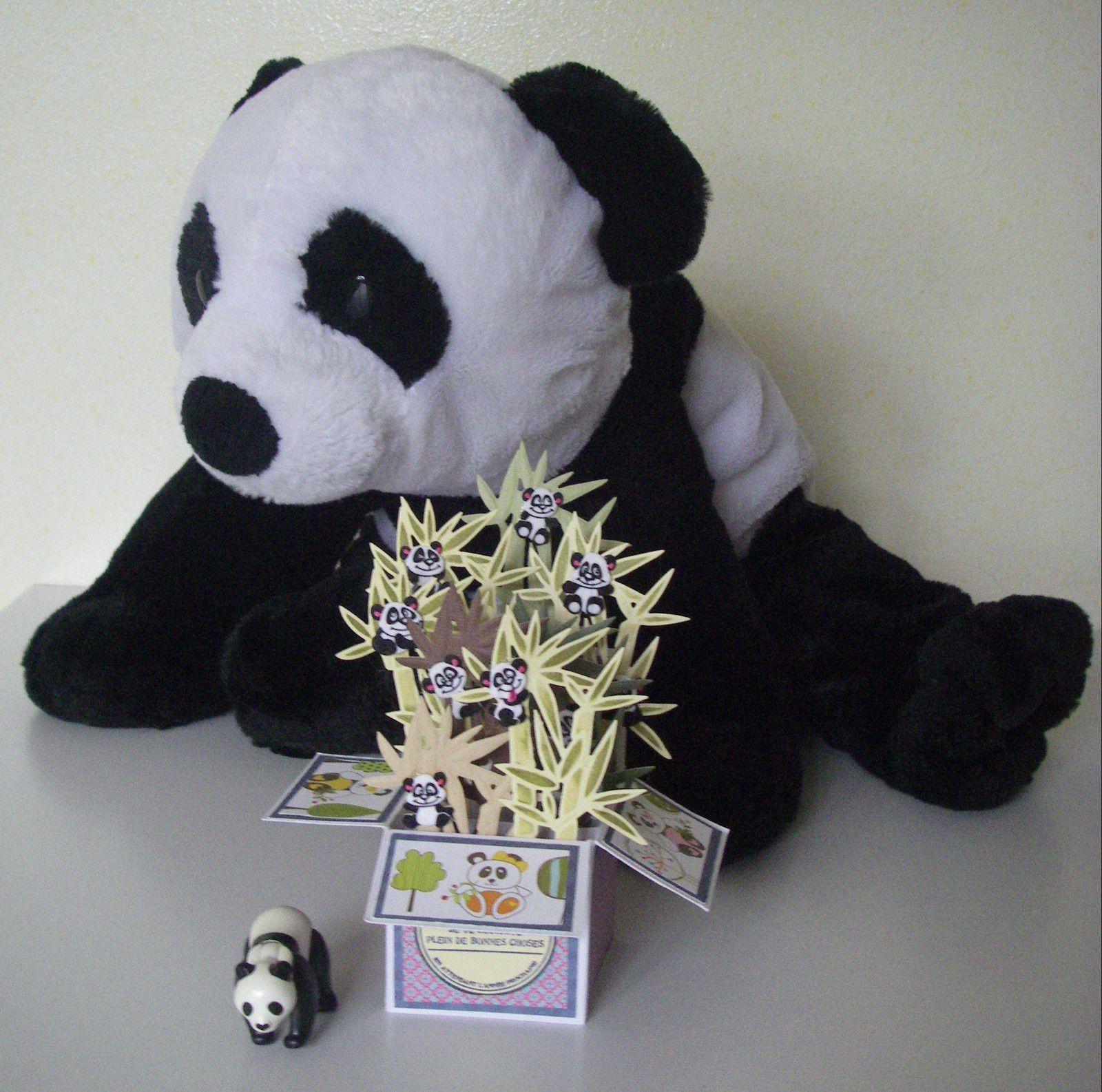 """J'ai trouvé le tuto dans le magazine """"Cartes 3D"""". J'ai utilisé un die bambou, et j'ai pris énormément de plaisir à y cacher 9 petits pandas !"""