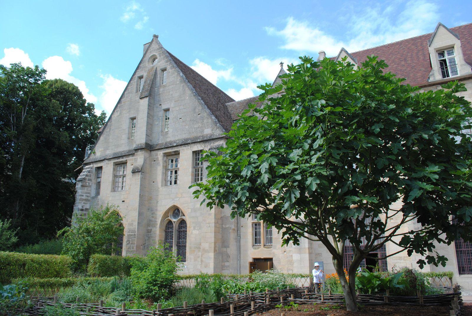 {Val d'Oise} L'Abbaye de Royaumont encore...