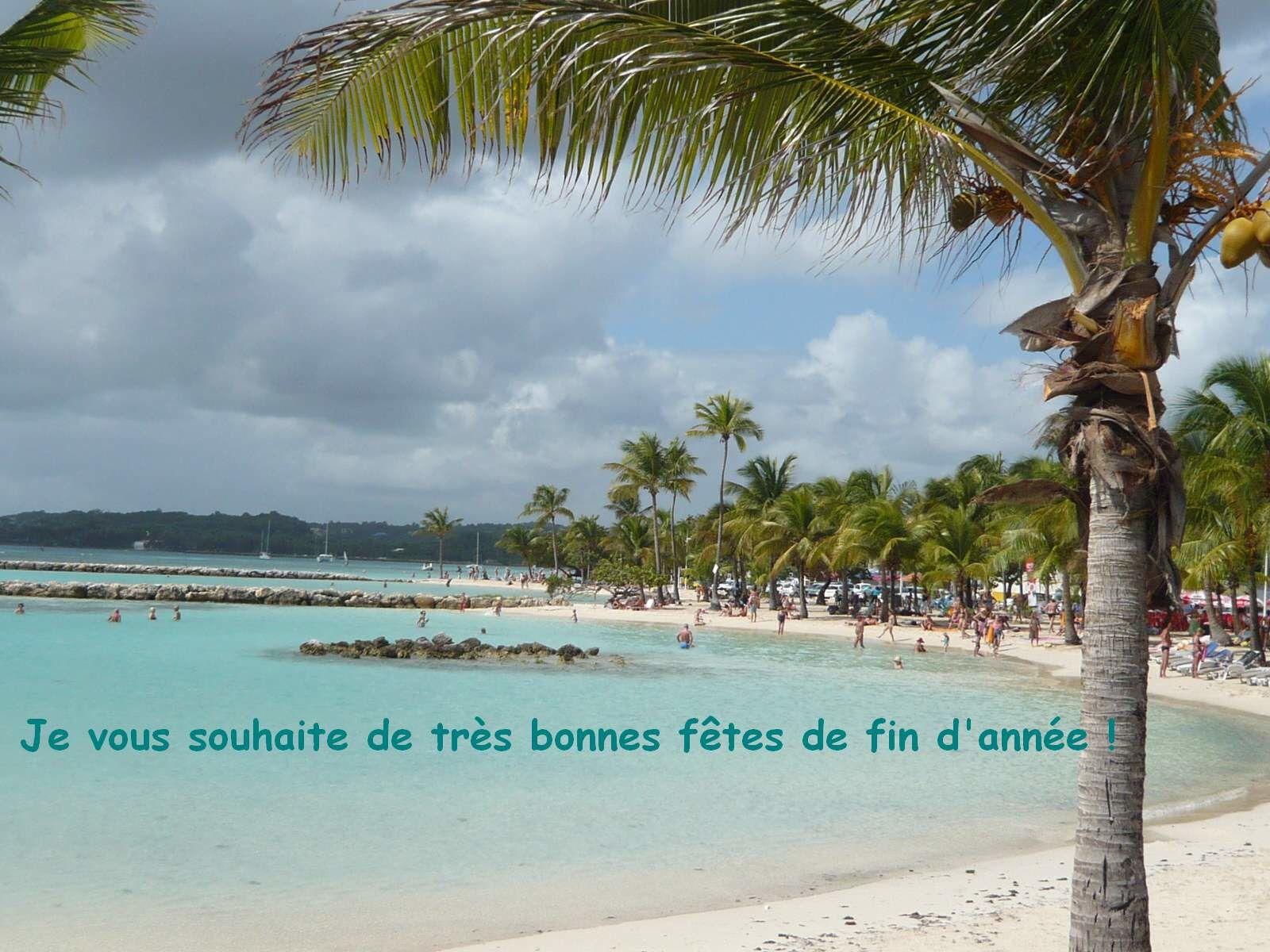 BONNES FETES DE FIN D'ANNEE