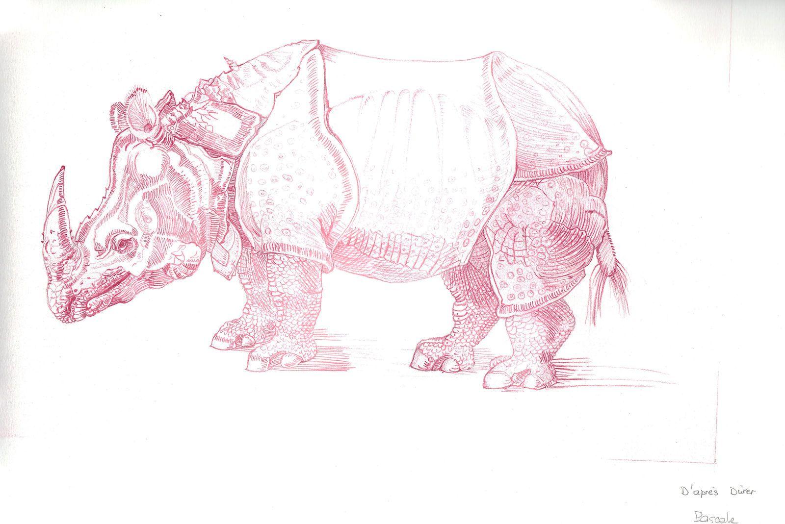 bestiaire à la Dürer