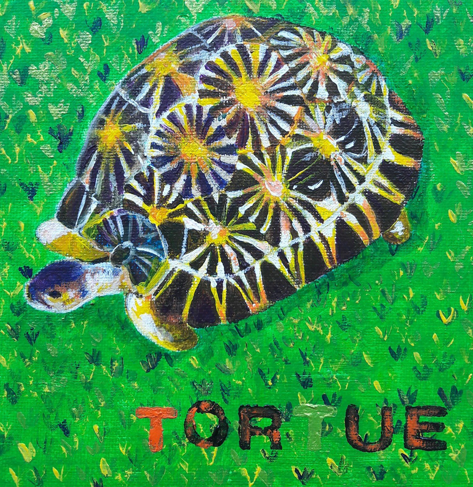 Tortue pour Lulu