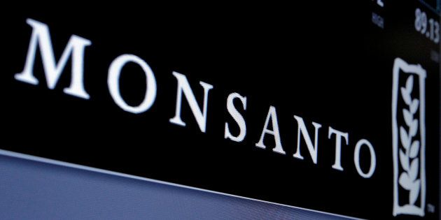 Monsanto logo is displayed on a screen where the stock is traded on the floor of the New York Stock Exchange (NYSE) in New York City, U.S. on May 9, 2016.