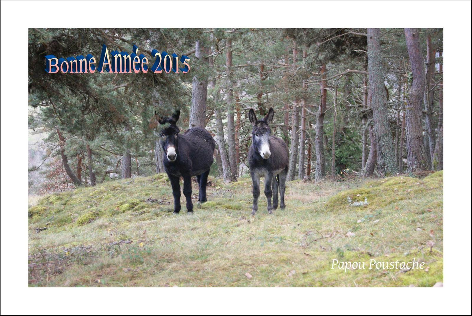 Cartes de Vœux  2015 gratuites d'Auvergne