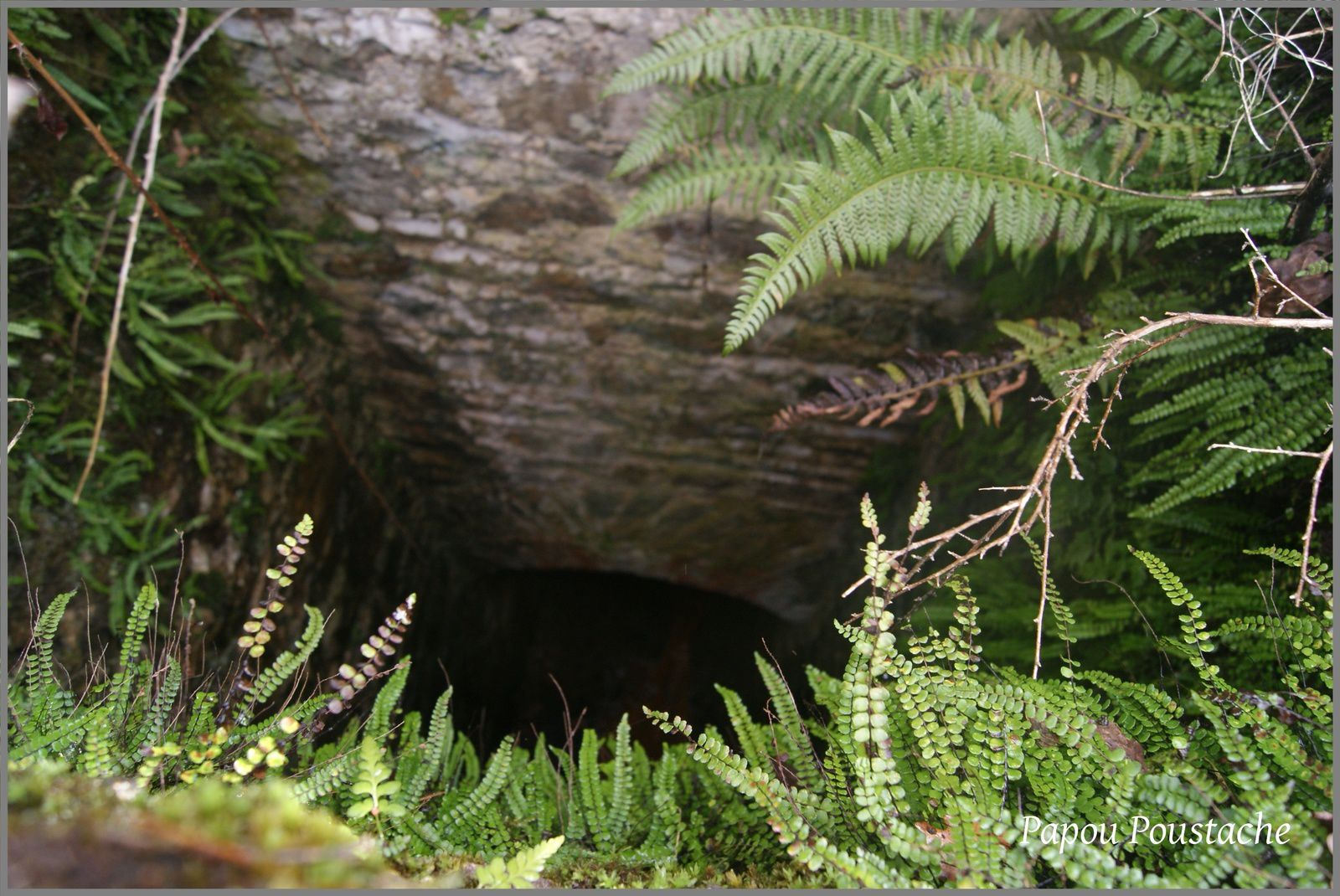 La source d'eau minérale de  Clémensat