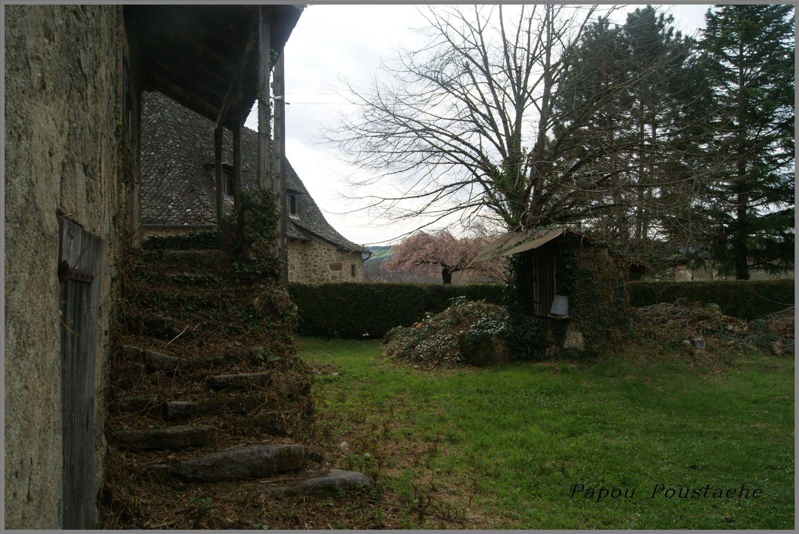 La châtaigneraie Cantalienne