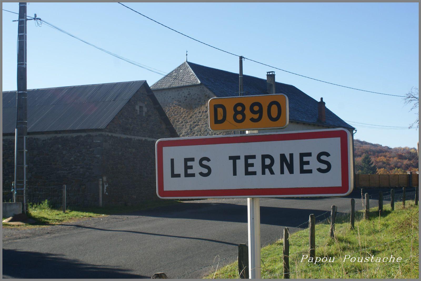 Les Ternes dans le Cantal