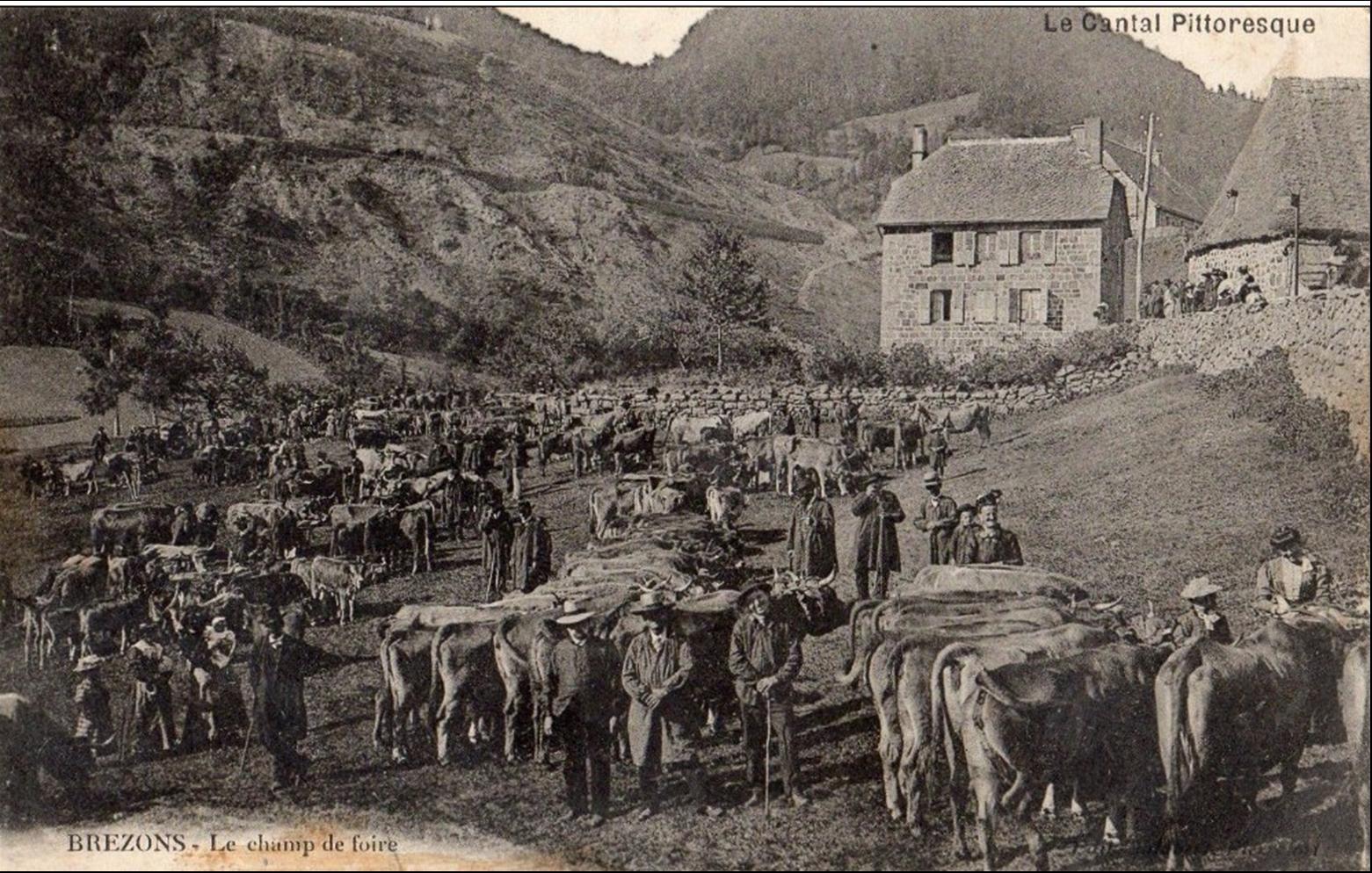 Brezons dans le Cantal