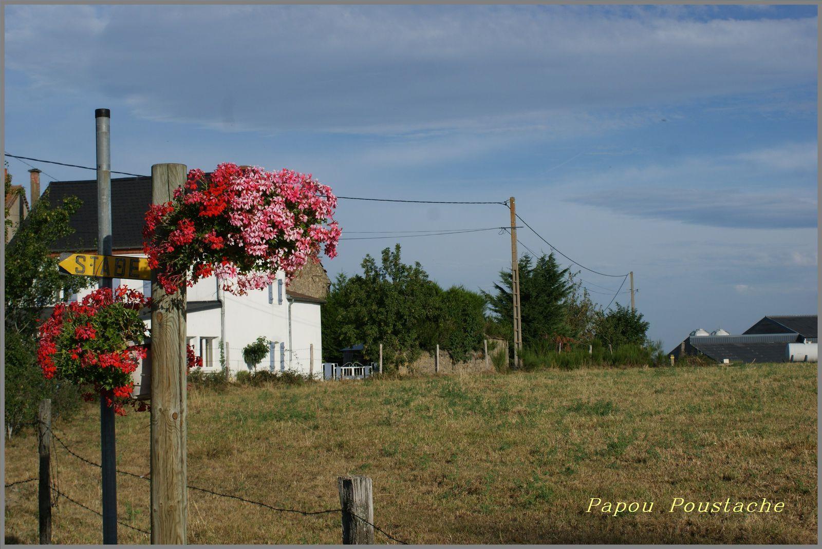 Randonnée à Ally Haute Loire