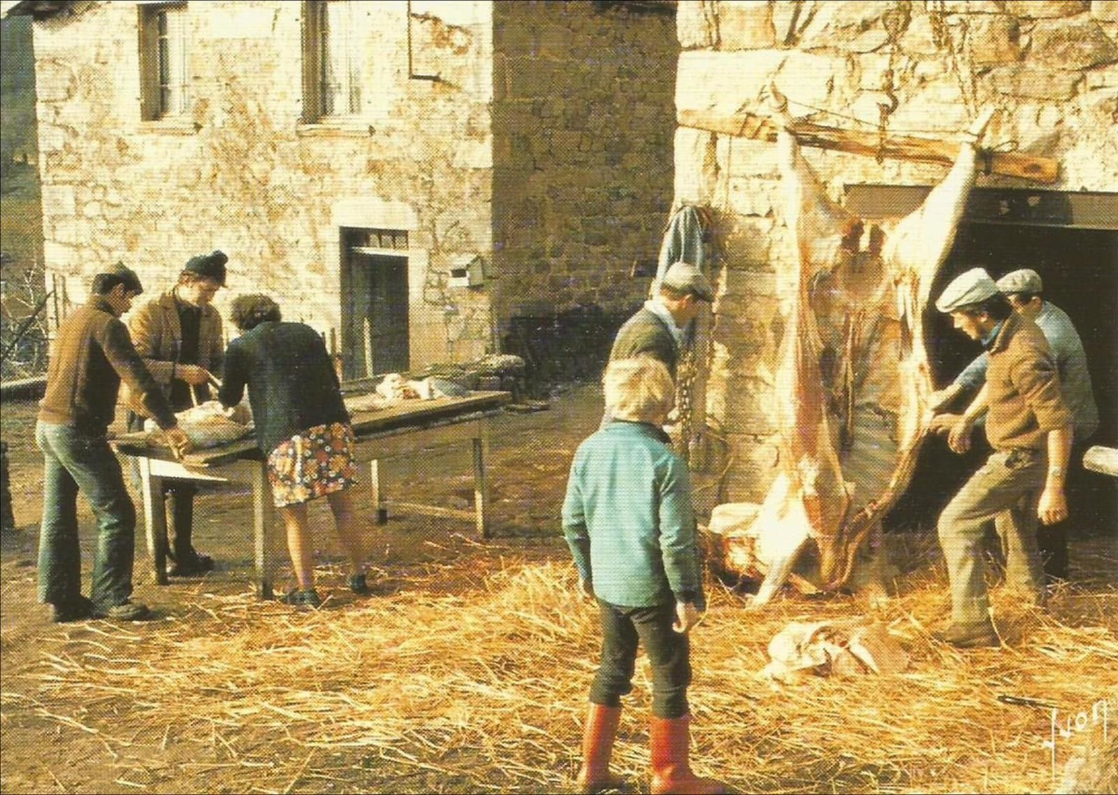 Auvergne des traditions: On tue le cochon