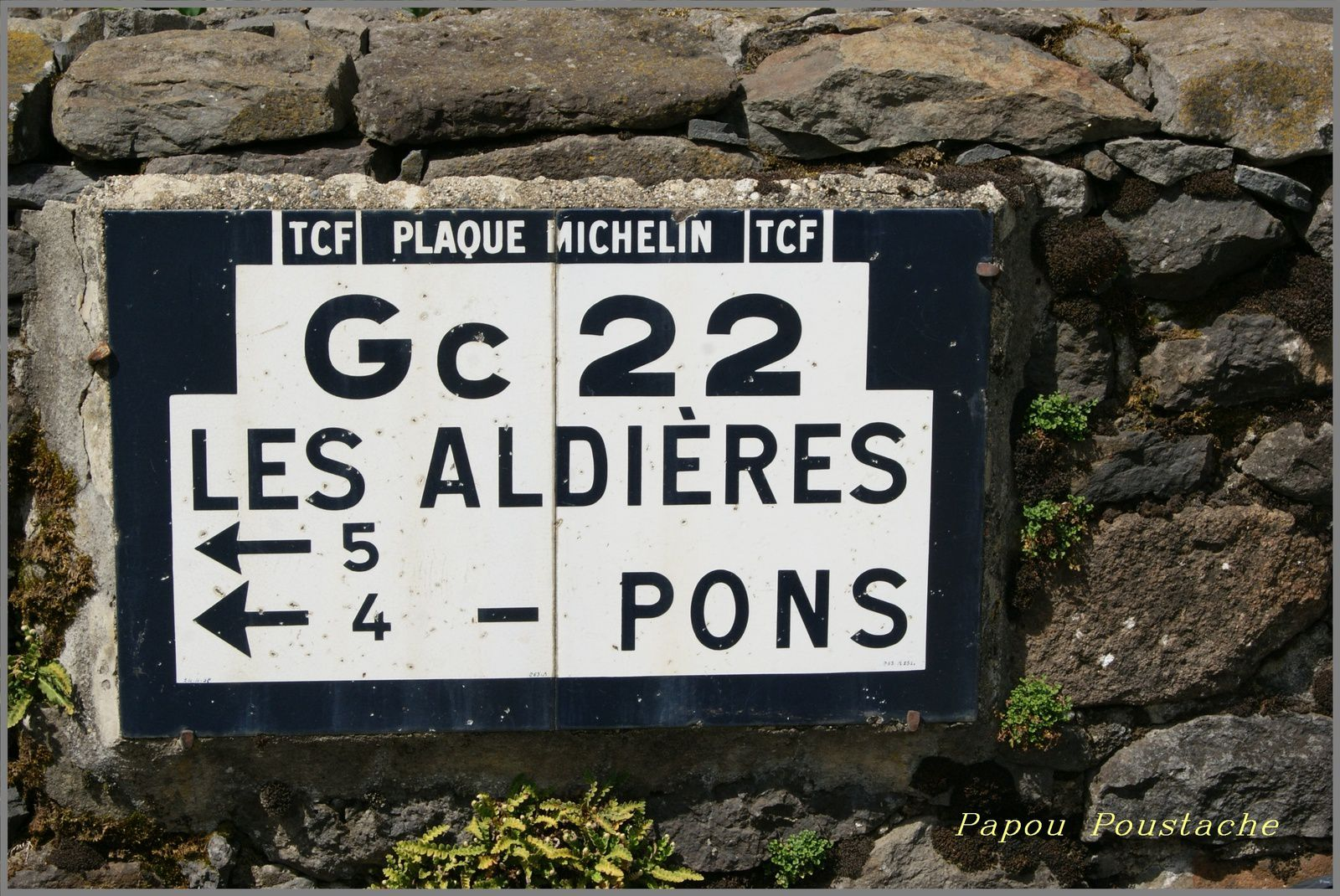 Anglards de Salers
