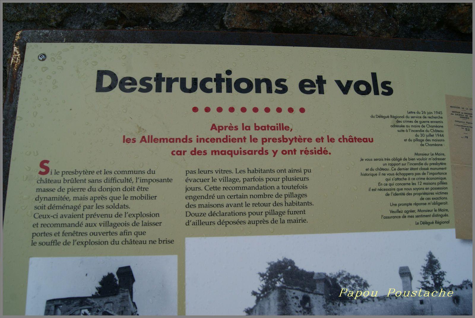 La bataille de Chaméane