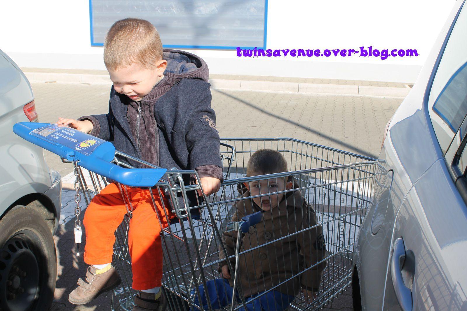 Je déteste faire les courses avec les Twins