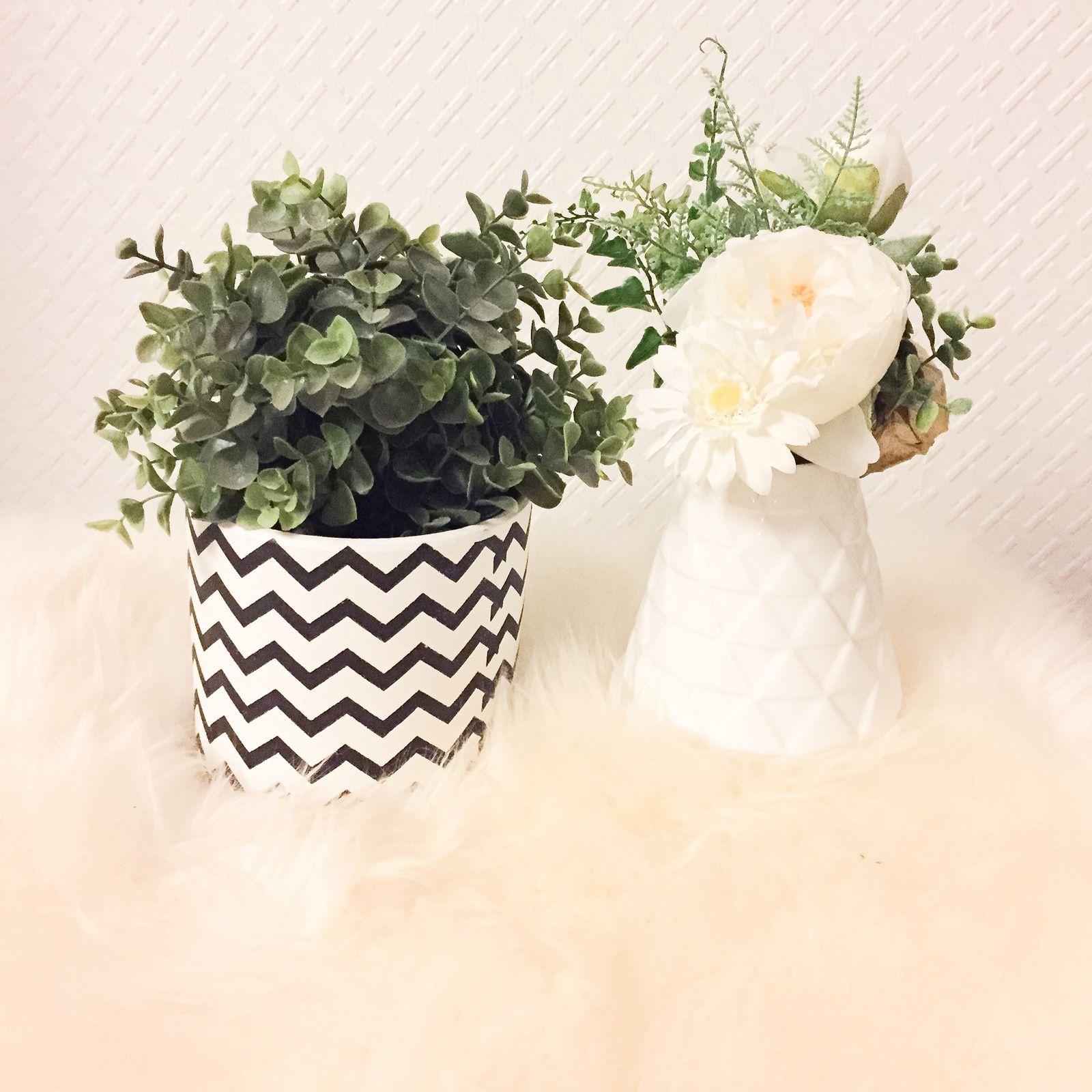 8- Belle plante