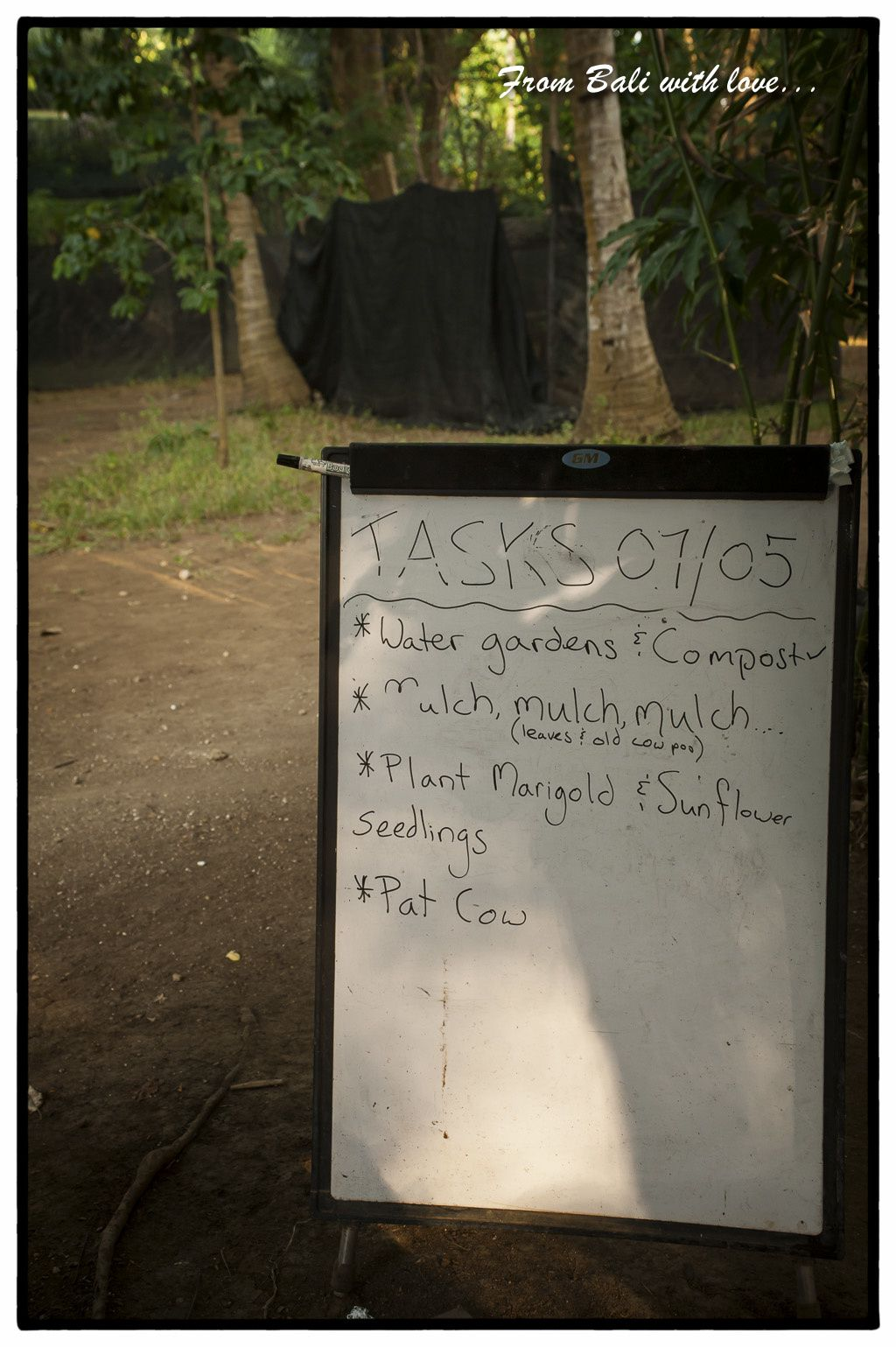 Bali-Take 4-Nusa Penida