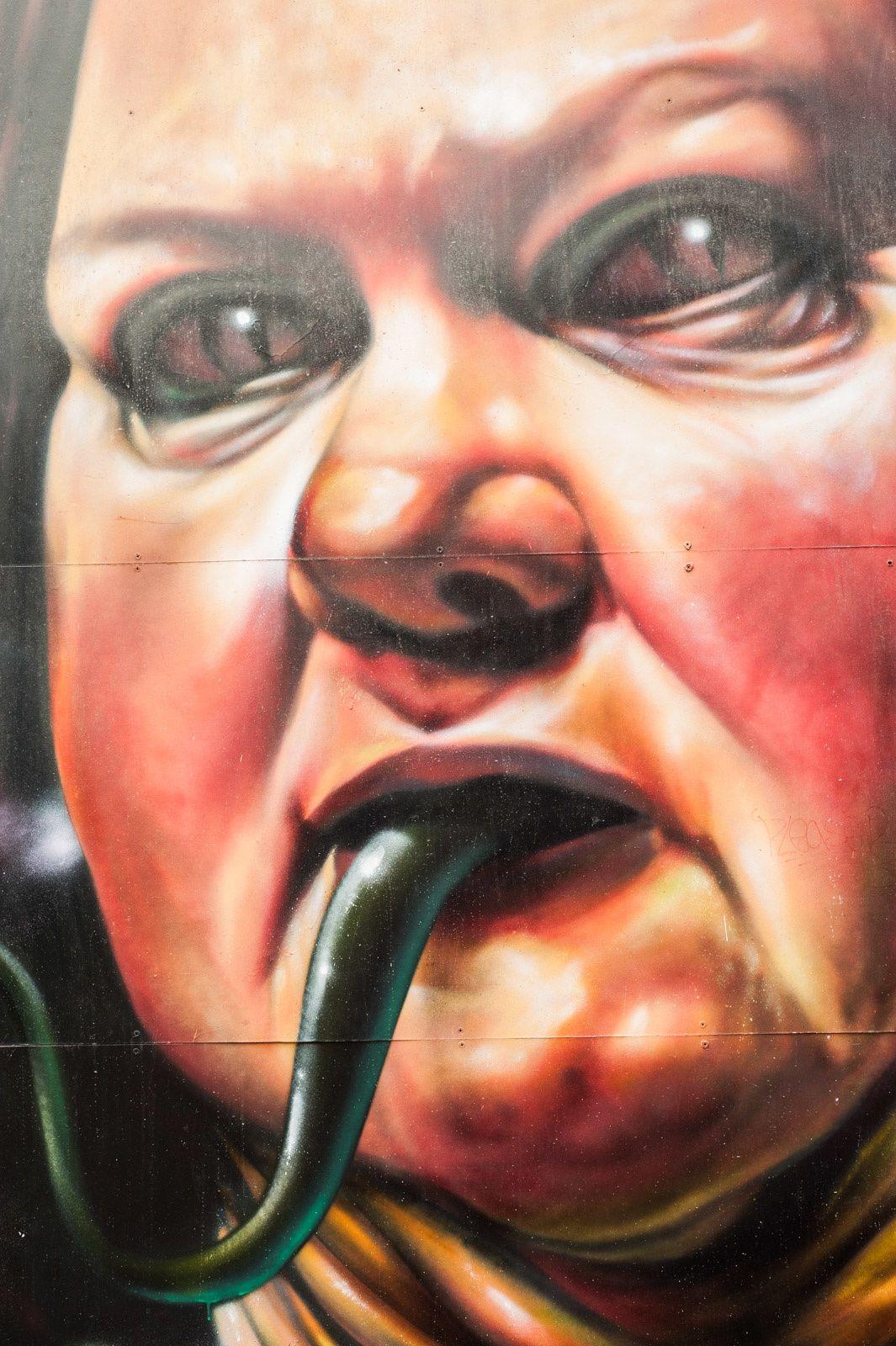 VIctoria, Australia, Take 1 - Le Street Art au poil de Melbourne