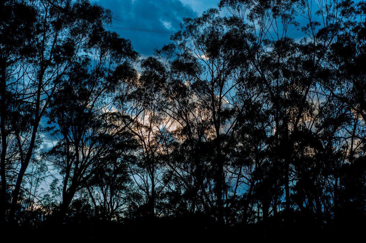 Victoria, Australia, Take 4 - La ruée vers l'or