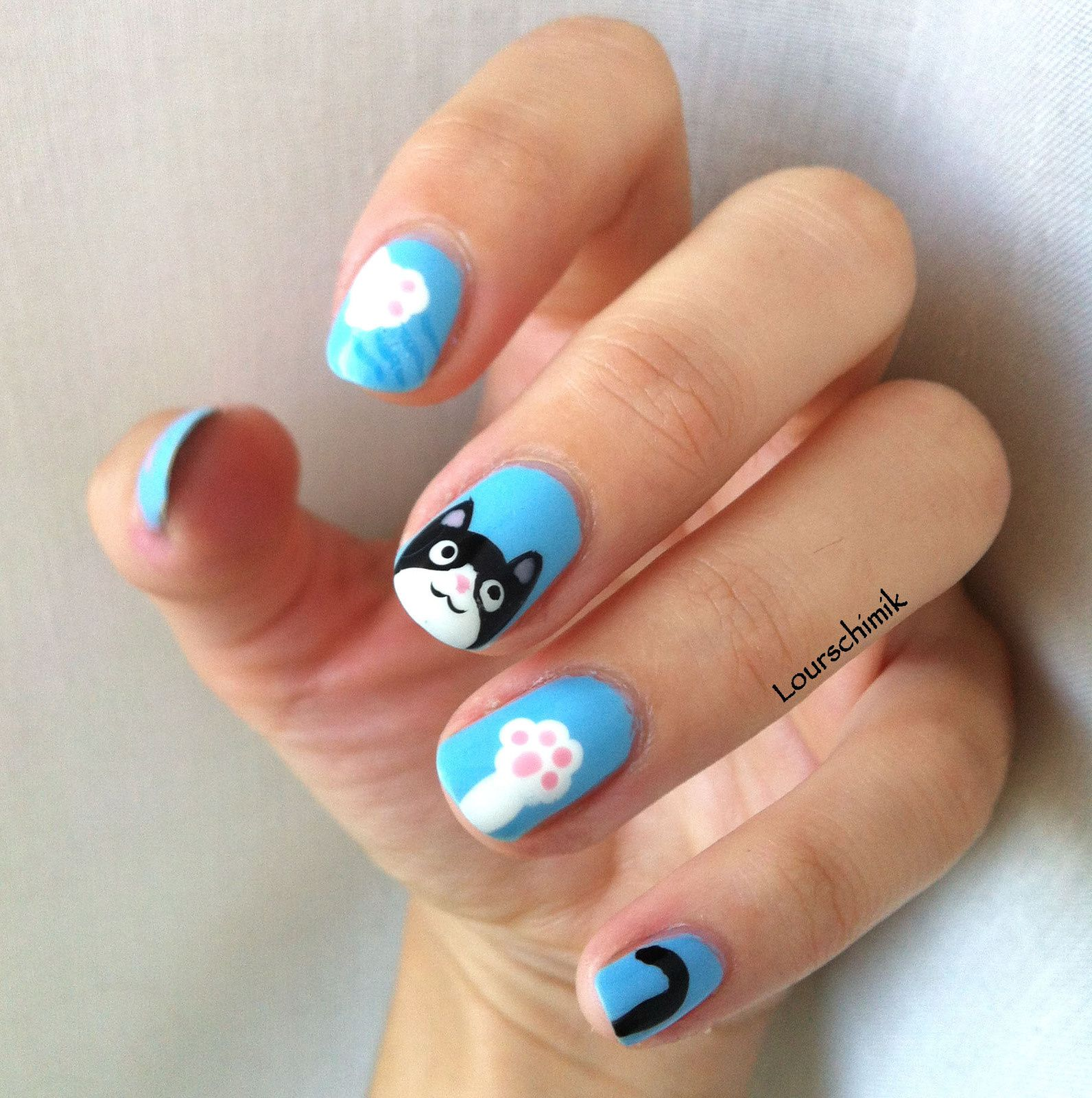 nailstorming animaux de compagnie