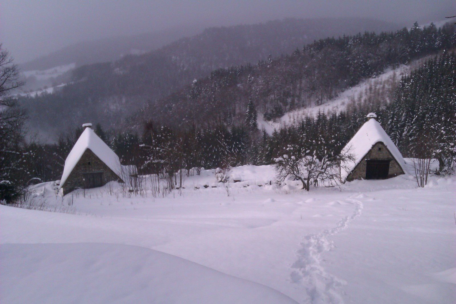 Neige gelée
