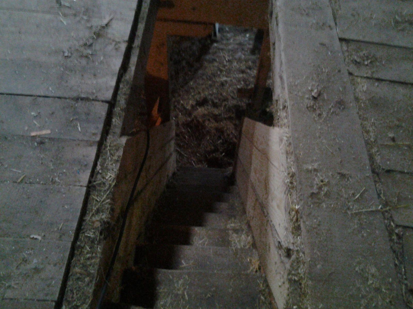 L'escalier cacher sous la rampe a foin a été ouvert. On c'est installer un coin repas au 1er car on y passe des journées entières.
