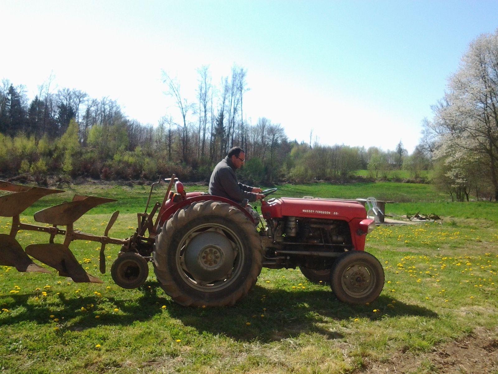 Le 1er essai de notre nouvelle acquisition, un tracteur Massey Fergusson 35.Avec charrue, barre de coupe, remorque et le broyeur arrive demain.
