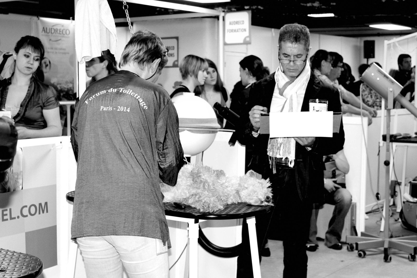 Forum du toilettage 2014