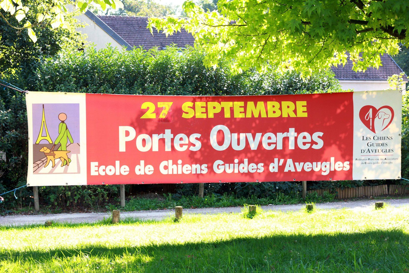 Chien guide d'aveugle