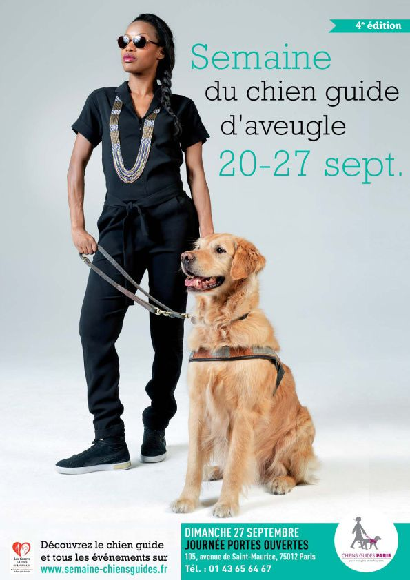 Chien guide d'aveugle - Photographe canin / Dog photography