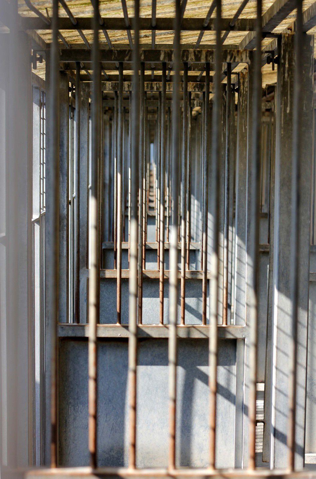 Les Portes Ouvertes du Refuge Gennevilliers Grammont