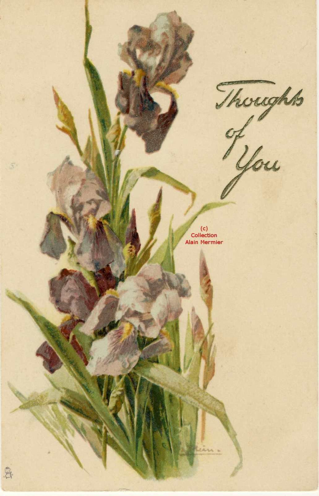 Iris -2292- Illustratrice Catherine KLEIN.   Thoughts of you. Grande Bretagne. 1905.