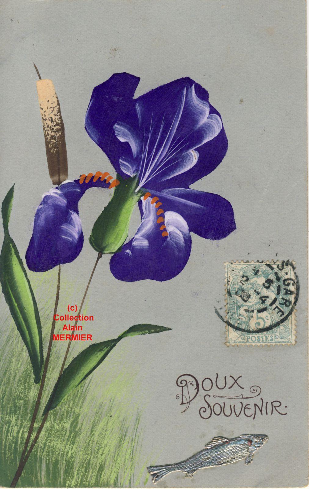 Iris -2021- Peint main. Doux souvenir. 1er avril. France. 1906.