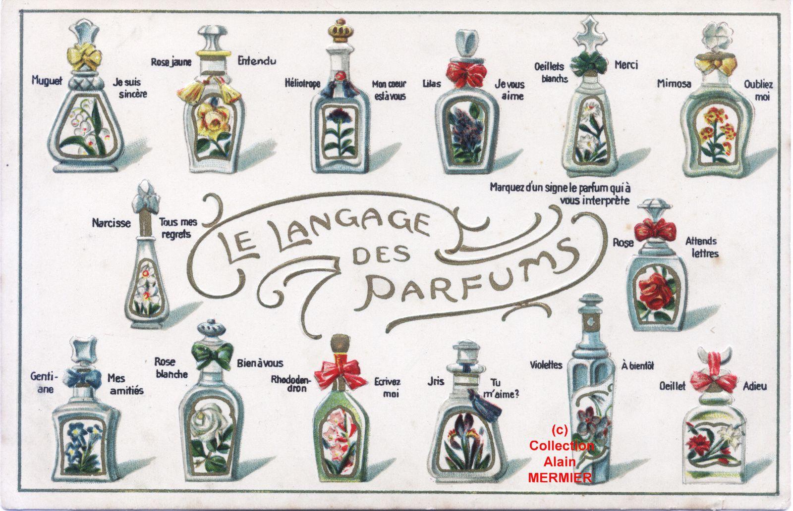IRIS -1910- Langage des parfums : Iris : tu m'aime (sic). France.